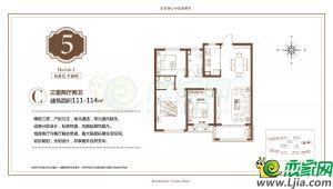 5号楼 C 114㎡ 三室