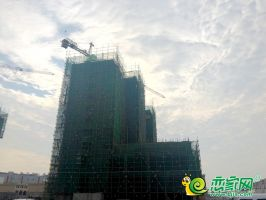 大树康城工地实景图(20180917)