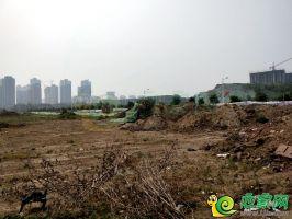 翠湖西华府地块实景图(2018.7.7)