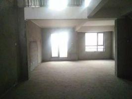 紫岸别墅带电梯 215万包更名 看房方便 可贷款