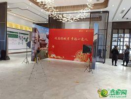 永洋绿城诚园售楼部实景图(2019.2.16)