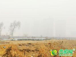 榮科·錦苑工地實景(2019.2.22)