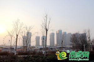 碧桂园天汇湾工地实景(2019.2.24)