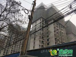 錦尚龍城(2019.3.5)