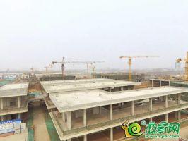 峰峰商业中心实景图(2019.3.4)