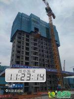 东部美的城实景图(2019.6.12)