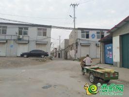 东辛庄村落(2019.6.20)