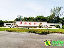 邯鄲市植物園北門