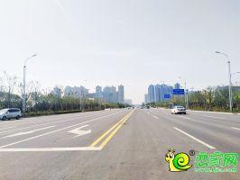 邯鄲東區秦皇大街