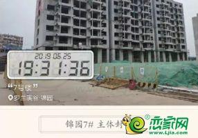 美的花溪谷實景圖(2019.6.25)