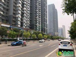 铂悦山周边实景图(2019.7.15)