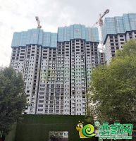 碧桂园·天誉5号楼实景图(2019.7.25)