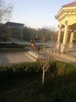 趙都新城1號地美和園