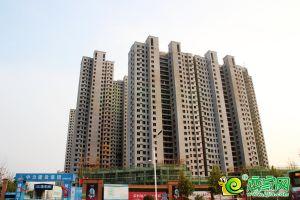 榮科翔苑實景圖(2019.07.28)