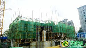 万腾.磁县观澜城17#楼(2019.07.30)