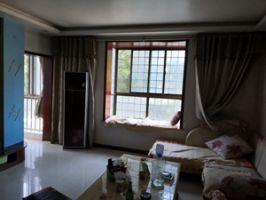 春風小區 三室兩衛學區房  公攤面積小 黃金樓層