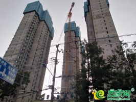 碧桂园天誉实景图 (2019.9.5)