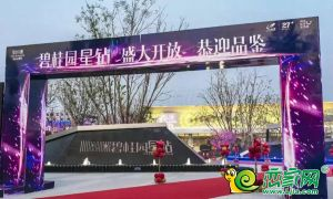 碧桂园·星钻实景图(2019.09.30)