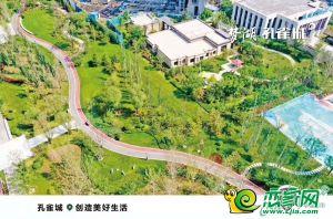 夢湖孔雀城1.2期(2019.10.9)
