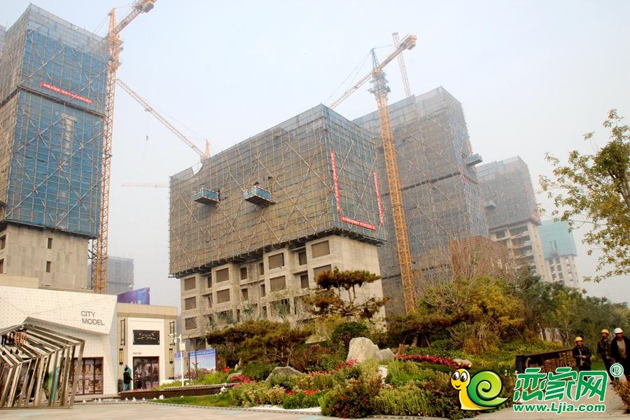东麟府实景图(2019.11.10)