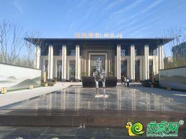 铂悦山实景图(2019.11.11)
