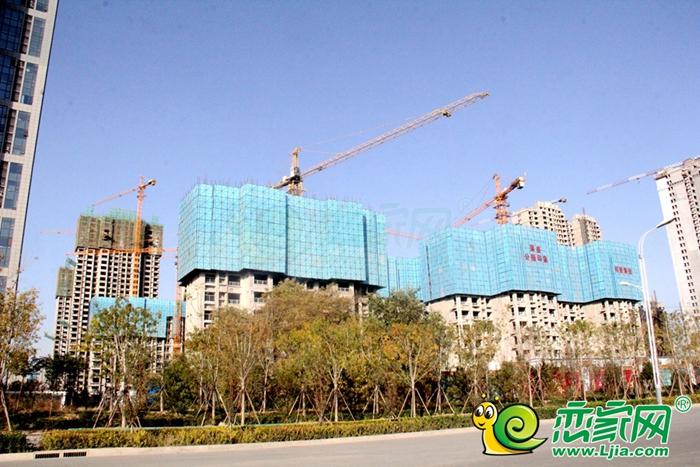 邯郸东区工程进度