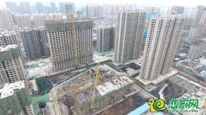 錦尚龍城實景圖(2019.11.26)