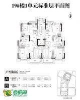 19号楼平面图