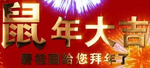 碧桂园给全市人民拜年啦——【恋家网出品】