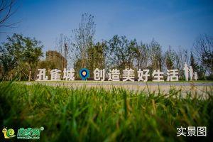 夢湖孔雀城1.2期