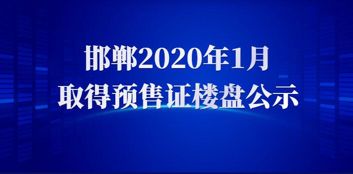 2020年1月 邯郸主城区预售证项目