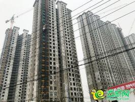荣盛城实景图(2020.03.08)