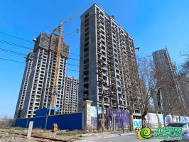 万浩大花郡(2020.3.11)
