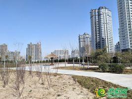 楓景華庭西側廣場(2020.3.11)