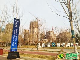 梦湖孔雀城(2020.3.16)