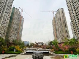 荣盛城实景图(2020.03.21)