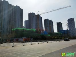 东城悦府实景图(2020.03.22)