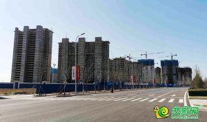 夢湖孔雀城(2020.3.24)