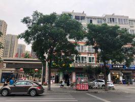中華南大街 嘉苑小區 一梯兩戶 單價九千 老證 4室2廳2衛