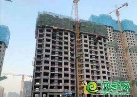 保利堂悅10號樓實景(2020.3.29)