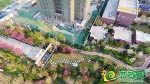 泽信·和熙府园林示范区航拍实景图(2020.3.29)