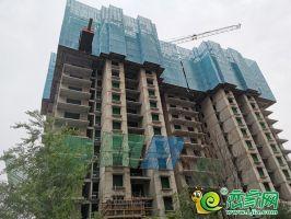 汉成华都实景图(2020.5.9)