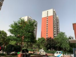 陽光公寓 農林路小學 漢光南中學 美食林小區對面