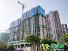 东城悦府实景图(2020.5.13)