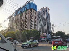 榮盛城實景圖(2020.05.10)