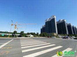 建设大街(2020.05.18)