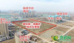 碧桂园锦麟府地块实景图(2020.3.18)
