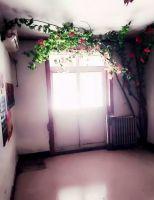 幸福街12号院1室1厅1卫
