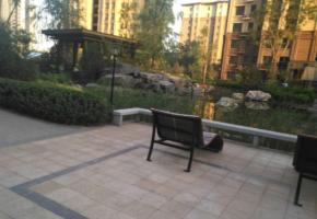 东柳大街 创鑫 阳光福邸 3室 有钥匙 能贷款 人民路