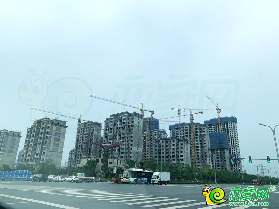 碧桂园美的东麟府(2020.08.08)